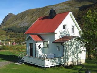 Gravermark ~ RA40545 - North Norway vacation rentals