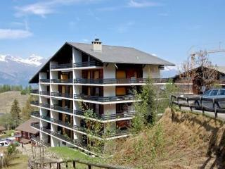 Torrent 4 ~ RA9620 - Nendaz vacation rentals