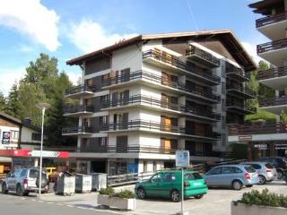 Richelieu 27 ~ RA9445 - Nendaz vacation rentals