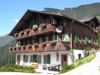 Auf Dem Vogelstein ~ RA10033 - Jungfrau Region vacation rentals
