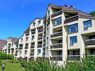 Apt Typ A1 ~ RA9949 - Bernese Oberland vacation rentals