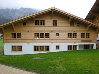 Marie-Françoise (Parterre) ~ RA9876 - Bern vacation rentals