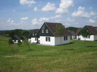 Happy Hill ~ RA40273 - Hradec Kralove Region vacation rentals