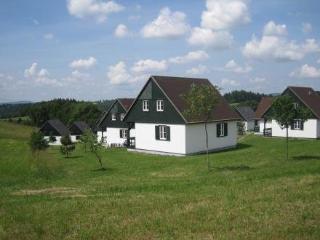 Happy Hill ~ RA40267 - Hradec Kralove Region vacation rentals