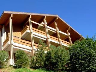 CHALET KROKUS ~ RA10125 - Wengen vacation rentals
