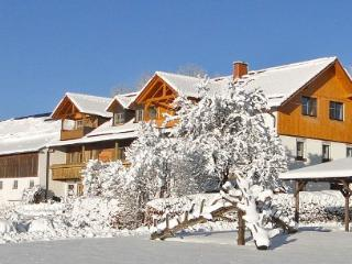 Vacation Apartment in Baernau - 667 sqft, idyllic, beautiful, natural (# 4657) - Barnau vacation rentals