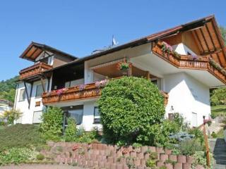 Wohnung 3 ~ RA13249 - Beerfelden vacation rentals