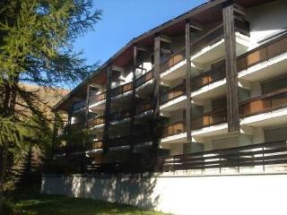 Le Prapelier ~ RA27219 - Les Deux Alpes vacation rentals