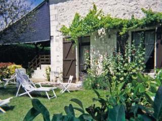 Les Mesanges Bleues ~ RA26139 - Chinon vacation rentals