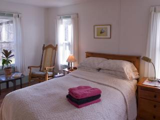 Perfect 3 bedroom Catskill House with Internet Access - Catskill vacation rentals