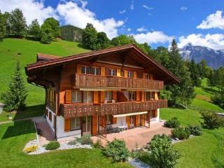 Hori ~ RA10076 - Jungfrau Region vacation rentals