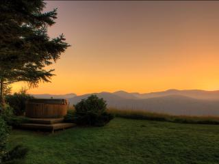 The Cabin, Luxury in the countryside with Hot tub. - Conwy County vacation rentals