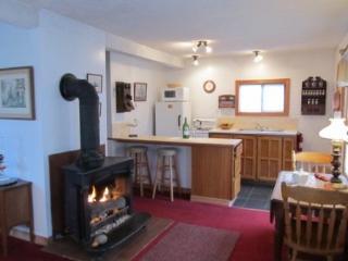 Nice 2 bedroom House in Stonington with Internet Access - Stonington vacation rentals