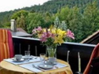 Vacation Apartment in Bad Herrenalb - 431 sqft, natural, comfortable, modern (# 4715) - Bad Herrenalb vacation rentals