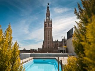 Luxury Apartment with Swimming pool.WIFI - Province of Seville vacation rentals