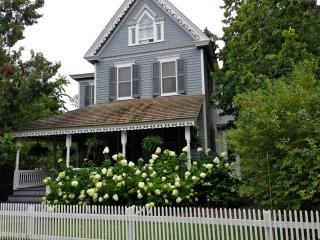 Gorgeous Victorian on Beautiful Property - w/ 4 season room! - Cape May vacation rentals