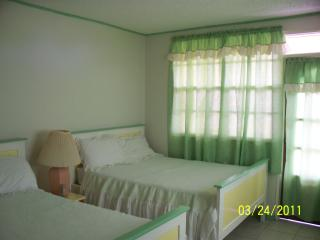 Bright 5 bedroom B&B in Morne Trois Pitons National Park - Morne Trois Pitons National Park vacation rentals
