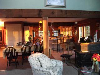 Lake Ossipee 4 Season Home;views/sunsets/amenities - Ossipee vacation rentals