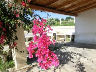 1 bedroom Cottage with Satellite Or Cable TV in Scicli - Scicli vacation rentals