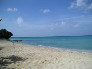 Romantic 1 bedroom Condo in Frederiksted - Frederiksted vacation rentals