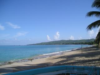 Nice Condo with Internet Access and Garden - Frederiksted vacation rentals