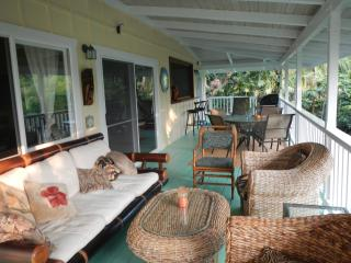 Manini Mermaid Beach House by Kealakekua Bay! - Captain Cook vacation rentals