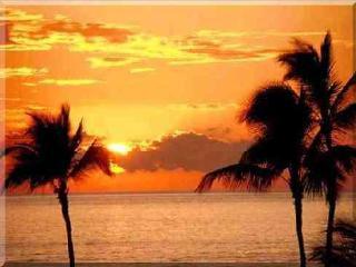 Mendel - Home 4 Bd/3 Bath - Pool near Beach - Marco Island vacation rentals