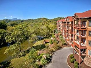 Nice 1 bedroom Condo in Sevierville with Internet Access - Sevierville vacation rentals