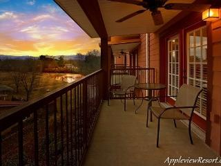 Suite Apple - Sevierville vacation rentals