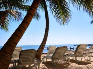 Quiet Secluded Beach Front 1 BR 1 BA Condo FIRST FLOOR ON THE BEACH - Ambergris Caye vacation rentals