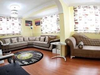 Central Location,2 Combined Flats - Istanbul vacation rentals