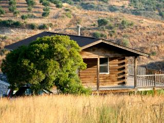 ROMANTIC,  ELEGANT AND HAND MADE LOG CABIN - Koroni vacation rentals