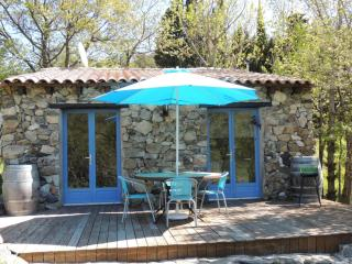 Perfect Fenouillet Studio rental with Deck - Fenouillet vacation rentals