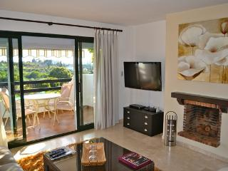 Apartment near Selwo Estepona - Estepona vacation rentals