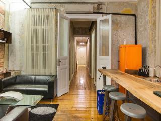 Amazing Design, Huge Flat, GALATA, 4 Bedroom 3 BA - Istanbul vacation rentals
