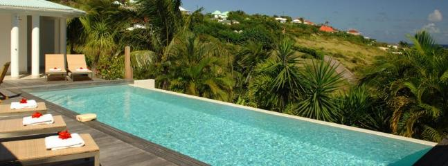 Blue Lagoon at Grand Cul de Sac, St. Barth - Ocean View, Pool, Private - Image 1 - Grand Cul-de-Sac - rentals