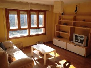 Guadarrama apartment - Navacerrada vacation rentals
