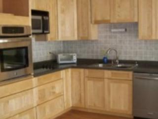 Great Sacandaga Lake House Rental - Northville vacation rentals