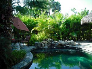 Pool - Casita del Mango at Rancho de los Sueños - Todos Santos - rentals