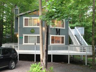 Pocono Getaway... Great Place to Vacation - Pittston vacation rentals
