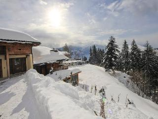 Beautiful Chalet with Satellite Or Cable TV and Hot Tub - Crans-Montana vacation rentals