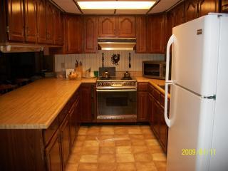 VACATION - VILLA    ( Clermont Florida) - Clermont vacation rentals