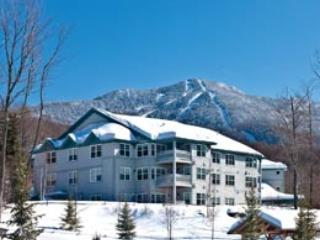 Upscale  3 Bdrm/3Bath Villa at Smugglers' Notch! - Brookfield vacation rentals