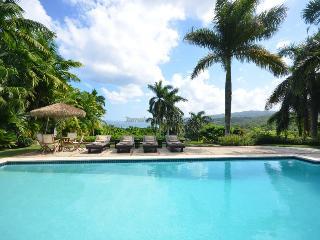 BEACH RESORT! LUXURY! STAFF! BUTLER!Villa Janus - Wiltshire vacation rentals
