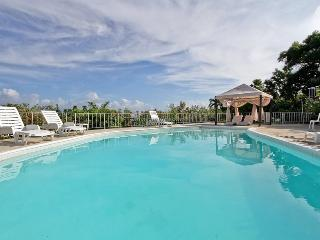 Ladywood Main-Montego Bay 6BR - Rose Hall vacation rentals