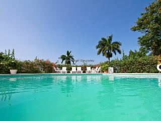 Blue Bird at Tryall - Montego Bay 4BR - Sandy Bay vacation rentals