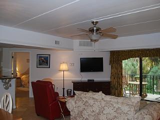 121 - Hilton Head vacation rentals