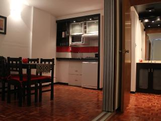 Romantic 1 bedroom Condo in Cordoba - Cordoba vacation rentals