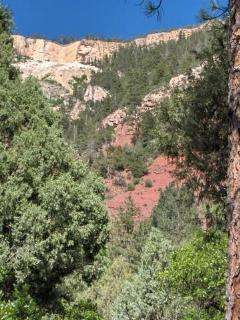 Quiet and Private Location in Animas River Valley - Durango vacation rentals