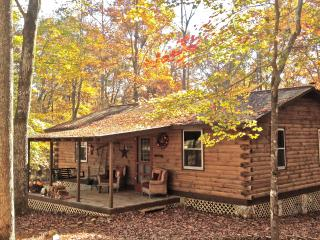 PRIVACY! Romantic Cabin On Tranquil 80 Acre Estate - Lake Lure vacation rentals